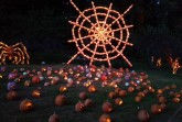 The 24 foot tall Spider Web is one of the most popular displays, all made out of hand carved pumpkins.