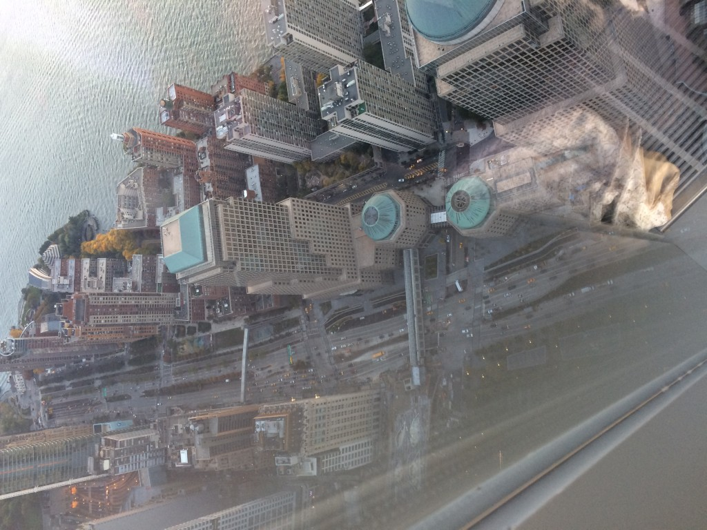 View from 100th Floor of WTC.