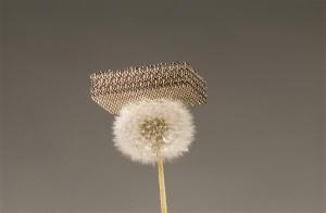 Microlattice metal lighter than a dandelion. Courtesy of HRL Laboratories, Photo: Dan Little