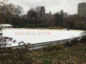 Wollman's Ice Skating Rink in Central Park.