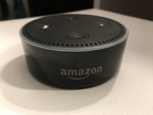 "The Amazon Echo is considered to  be an ""always on"" device which  can be a threat to privacy. Credit: Parsha Zaman"